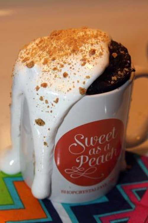 Recipe for Chocolate Fudge Smores Microwave Mug Cake - It's a simple, individual dessert baked in a coffee mug in your microwave in about 5 minutes!