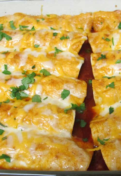 for Cheesey Chicken Enchiladas – I REALLY wanted some enchiladas ...