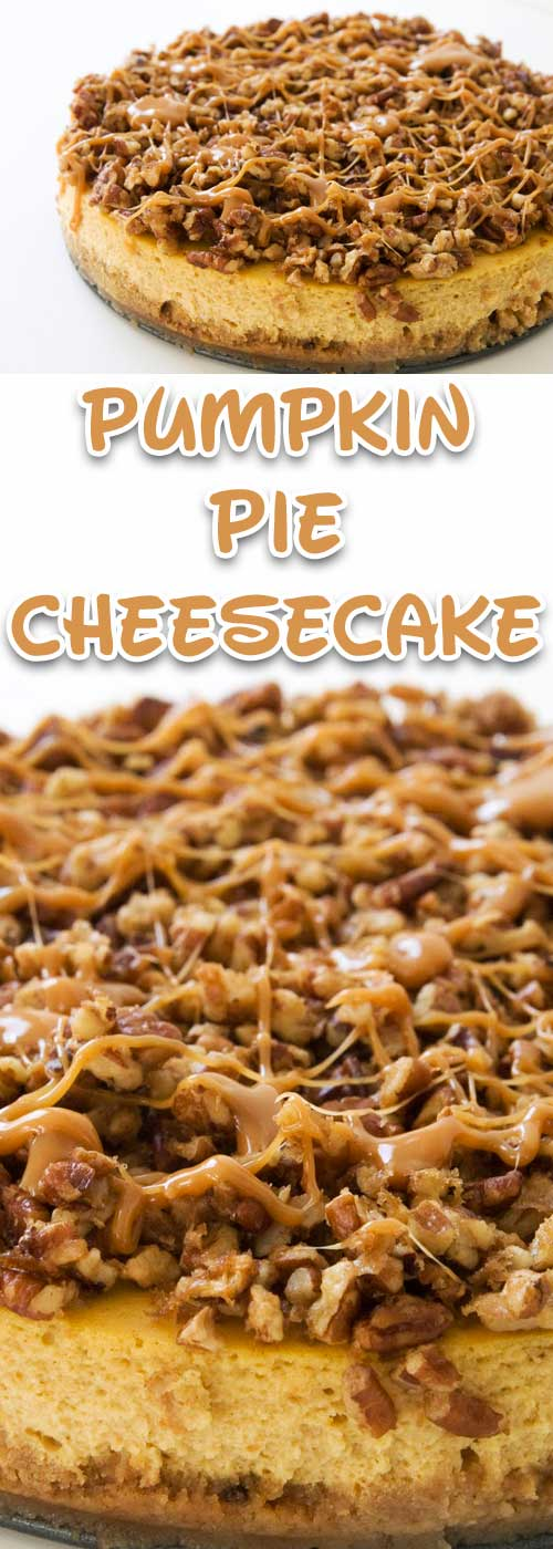 Recipe for Pumpkin Pie Cheesecake - I guarantee this pumpkin cheesecake will be the creamiest cheesecake you'd ever had. And the turtle topping? Gives a nutty explosion of flavor that contrasts with that smoothness. Don't expect any leftovers.