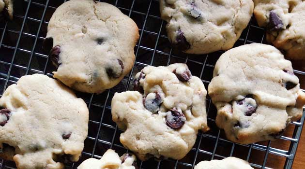 Recipe for Chocolate Chip Pretzel Cookies - With the addition of crushed pretzels to the cookie dough, these easy chocolate chip cookies are the perfect balance between salty and sweet.
