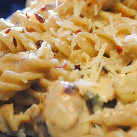 Recipe for White Cheddar Chicken Pasta - The sauce is a simple cheese sauce, similar to any macaroni and cheese recipe. Add some chicken and you'll have a great meal in just a few minutes.