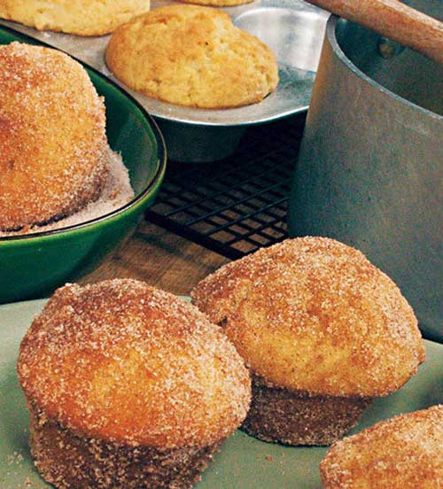 Recipe for Baked Doughnut Muffins - They may look like muffins, but a dunk in melted butter and a roll in cinnamon-sugar makes these luscious morsels taste more like donuts, without the hassle of deep-frying