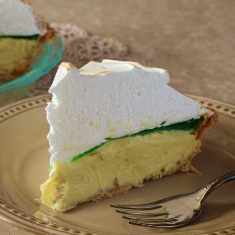 Can't decide if you want to go out drinking, or have pie? Then why not just do BOTH! Add a little salt to the crust, and you got everything that makes a margarita great…in a pie.