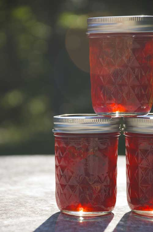 Recipe for Strawberry-Port Wine Preserves - Wine makes everything better, even plain old strawberry preserves.