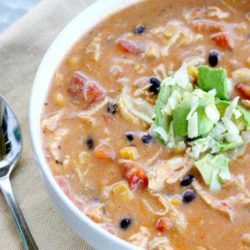 Recipe for Crock Pot Chicken Enchilada Chowder - As if you could make this soup any easier, here's a little time saving trick I use to shred the chicken. Once you have your warm cooked chicken, simply place it in a bowl, and with a hand mixer beat the heck out of it. It surprisingly shreds with ease in under 30 seconds. You will never shred chicken by hand again.