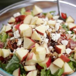 Recipe for Bacon Apple Raspberry Vinaigrette Salad - This is probably one of my favorite salads! i love the sweet taste from the raspberry vinaigrette to the saltiness of the bacon! this is a perfect summer salad!