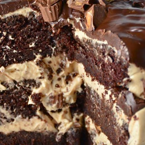 Overload definitely describes this ridiculously amazing Chocolate Peanut Butter Cup Overload Cake.