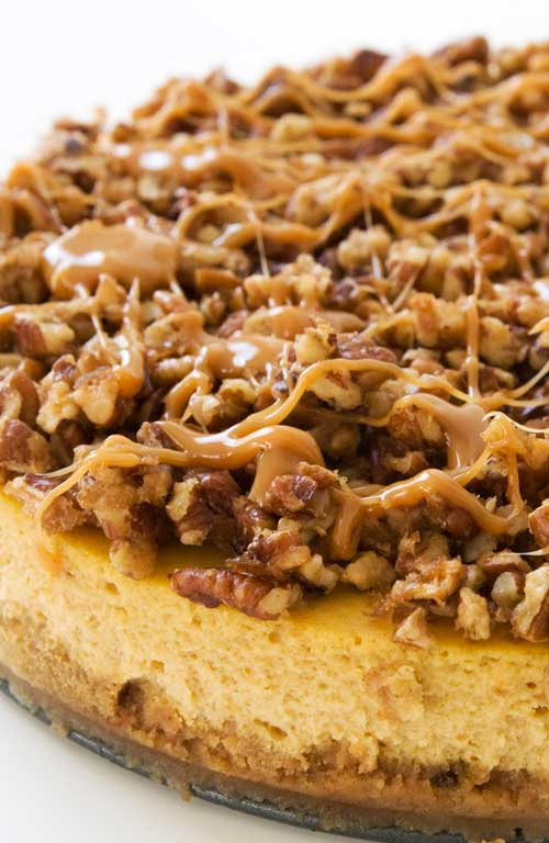 I guarantee this pumpkin pie cheesecake will be the creamiest cheesecake you'd ever had. And the turtle topping? Gives a nutty explosion of flavor that contrasts with that smoothness. Don't expect any leftovers.