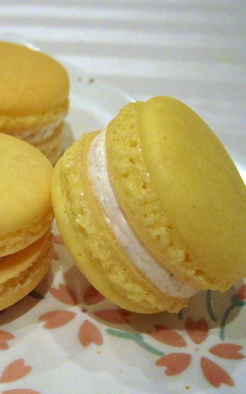 Recipe for Eggnog Macarons - Eggnog macarons that are perfectly spiced with hints of cinnamon, cloves and nutmeg and filled with creamy eggnog buttercream.