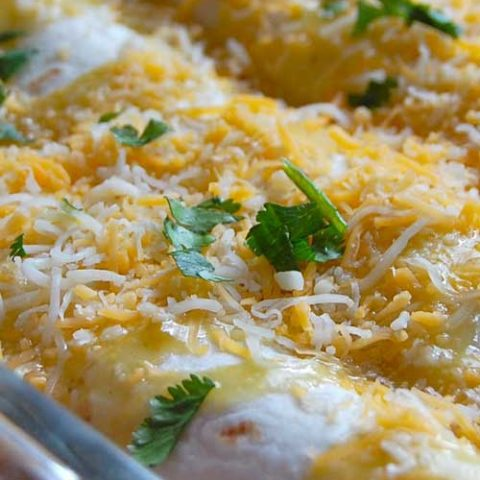 Recipe for Easy Chicken Enchiladas - This enchilada dish is sure to be a new family favorite; it is simple to put together and also perfect for leftovers.....if you ever have any!